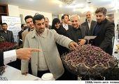 احمدی نژاد: روحانی مثل من از کنار به کشور آسیب بزند + عکس