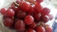 انگوری که مزه پشمک میدهد+عکس