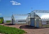 افزایش ده هزار میلیارد ریالی پرداخت تسهیلات قرض الحسنه توسط بانک کشاورزی