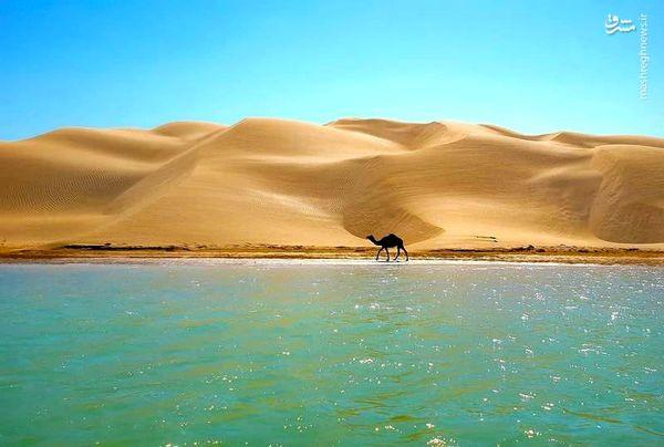 تلاقی کویر و دریا در سیستان و بلوچستان!+عکس