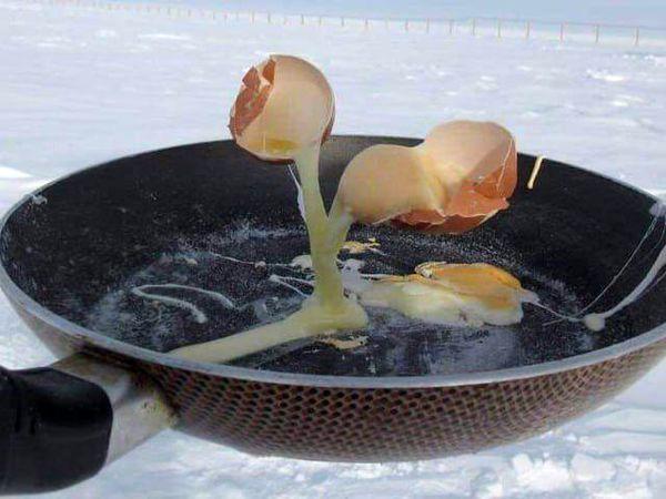 تصویری جالب از پختن تخم مرغ در قطب جنوب