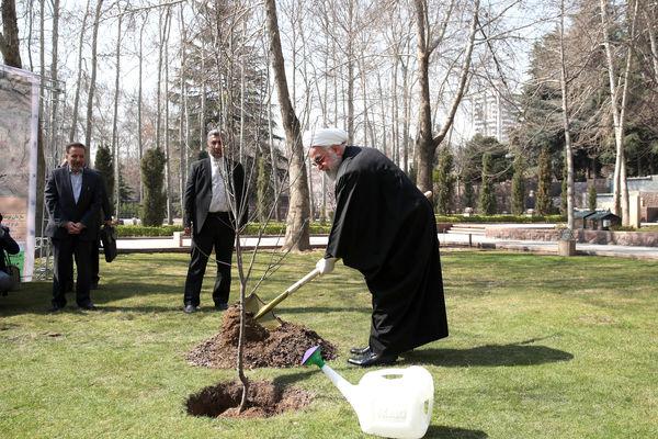 ضرورت استفاده از درختان مثمر در درختکاری