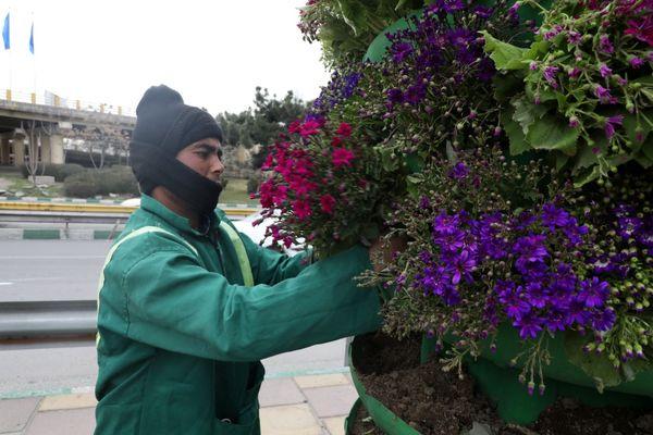 میادین و معابر منطقه2 با نصب گلدانهای شهری آراسته شد
