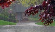 آخرین وضعیت بارشهای ایران