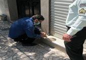 اجرای تمهیدات ترافیکی در طرح استقبال از مهر منطقه 15