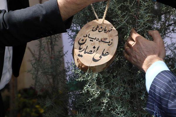 غرس نهال به یاد قهرمان ملی، علی انصاریان