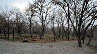 اعلام آمادگی شهرداری منطقه یک پایتخت جهت اجاره و حفظ باغات اوقافی