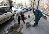 مرمت و محوطهسازی باغ کیهانی (معیرالممالک) در قلب طهران آغاز شد