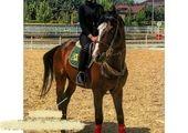 الناز حبیبی با کت و شلوار زرد! +عکس