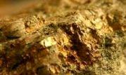 کشف اولین معدن طلا در همدان