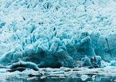 پرسه خرس قطبی در منطقه مسکونی سیبری+ عکس