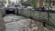 جمع آوری 60 تن زباله از مسیل ها و انهار شمال شرق تهران همزمان با بارش های بهاری