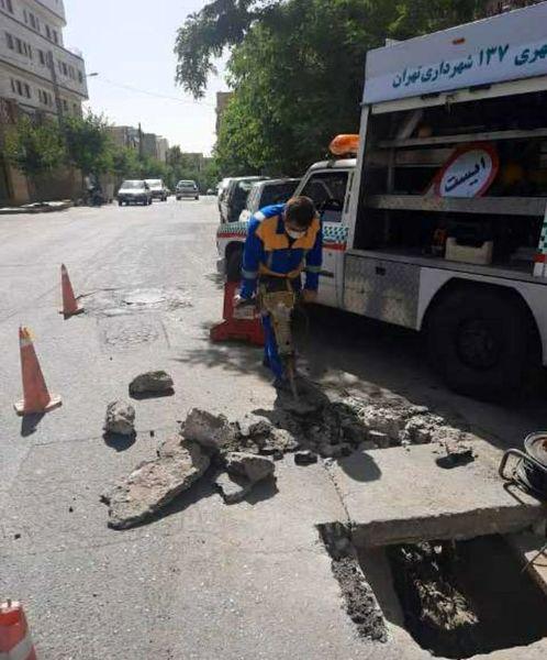 کسب رتبه دوم  سامانه ۱۳۷  منطقه ۴ در بین مناطق ۲۲ گانه شهر تهران