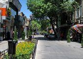 واکنش بهنوش بختیاری به نامگذاری خیابانی به اسم شجریان+عکس