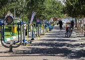 مراسم درختکاری در سازمان پایانههای مسافربری شهرداری قم برپا میشود