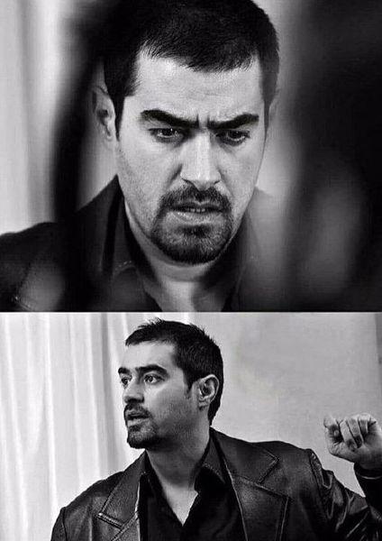 جدیدترین تصویر از شهاب حسینی+عکس