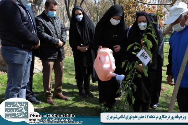 ویژه برنامه روز درختکاری در منطقه 7 با حضور عضو شورای اسلامی شهر تهران