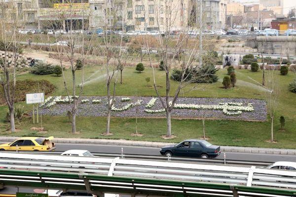 احداث بیش از چهار هزار متر مربع فرش گل در منطقه 13