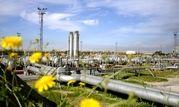 پیام مدیرعامل شرکت ملی مناطق نفتخیزجنوب به مناسبت هفته محیط زیست