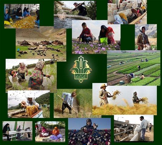 ایجاد 45000 کسب و کار پایدار جدید در مناطق روستایی و عشایری با حمایت بانک کشاورزی