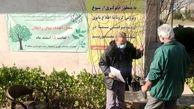 توزیع نهال  رایگان در بوستان های شمال شرق پایتخت