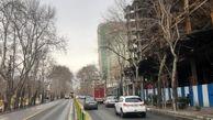 بررسی آفات و بیماری های درختان روتبال در خیابان ولیعصر(عج)