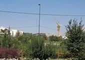 اجرای طرح فوریتی نگهداشت شهر در شمال تهران