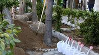 کاشت 2500 اصله نهال در نهضت درختکاری محله های مرکزی شهر تهران