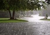افزایش ۵۰ درصدی بارشها در تهران