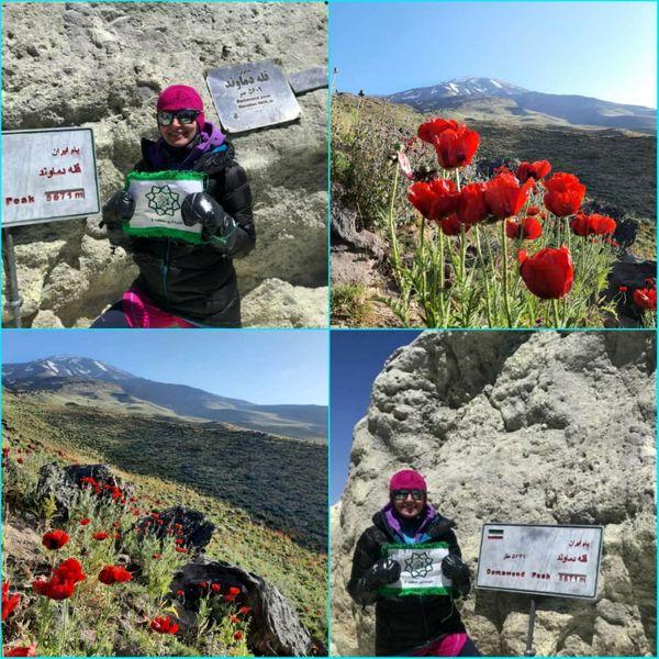 اولین صعود همکار شهرداری منطقه۶ تهران به بلندترین قله ایران