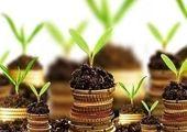 زنجیره ابزارهای مالی کالاهای کشاورزی تکمیل شد